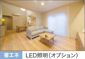 LED照明(オプション)