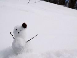 今年は暖冬?原因とされるエルニーニョ現象について調べてみました。