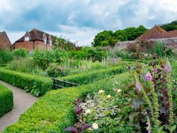 この春から始める家庭菜園・ポタジェの作りかた