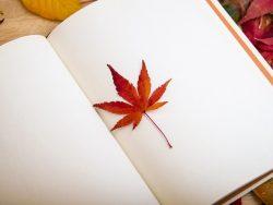 もうすぐ秋!今年の秋は何の秋?
