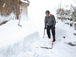 「親雪」雪国にみる雪と共に生きる知恵