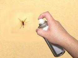 これからの季節に頼りになる、蚊に効く殺虫剤の種類