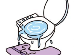 災害時いつもの暮らしはどうなるの?「東京くらし防災」から学ぶトイレ編
