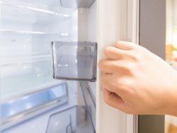 コーディネーターが教える「冷蔵庫はどう選ぶ?」