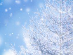 富山県と岩手県、どちらが寒い?