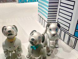 SONYの自律型エンタテインメントロボット「aibo」がすごい!