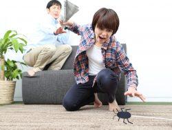 新築にもゴキブリは発生するのか?原因と対策方法