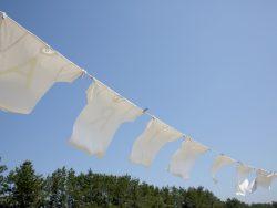 Tシャツが長く着られる洗濯のコツ