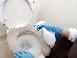 トイレ掃除の基本。上から下がお約束