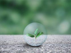新制度!「グリーン住宅ポイント制度」の概要と対象住宅へのリンク